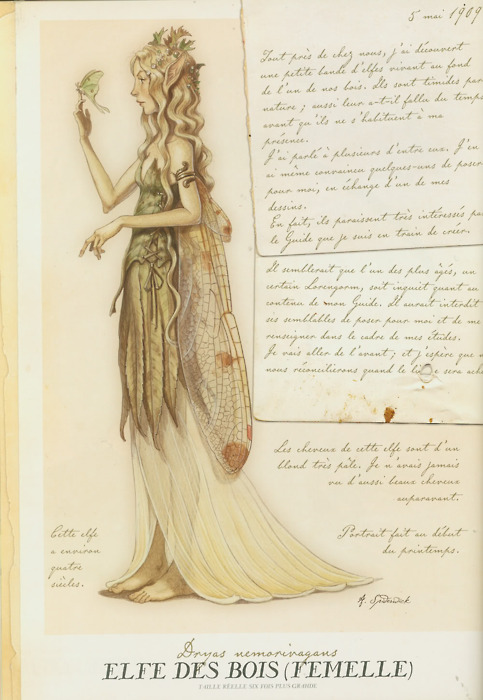 Spiderwick Chronicles Tony DiTerlizzi Main inspiration behind The Hollow Hills characters